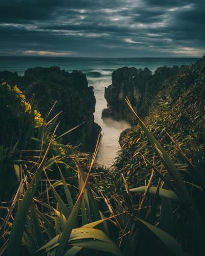 New Zealand 08