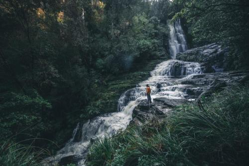 New Zealand 17